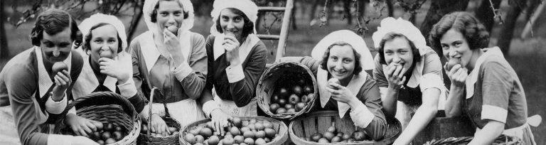 Pauze tijdens de appelpluk, 1936. Collectie Landbouwleven / Le Sillon Belge